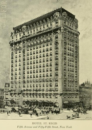 Zeichnung vom St. Regis New York - 1904
