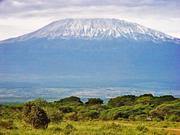 Kilimanjaro - Foto: Tambako The Jaguar - CC BY-ND 2.0 / Zum Vergrößern auf das Bild klicken