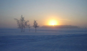 Sibirischer Winter - Foto: hobnob_malevolence  - CC BY-SA 2.0 / Zum Vergrößern auf das Bild klicken